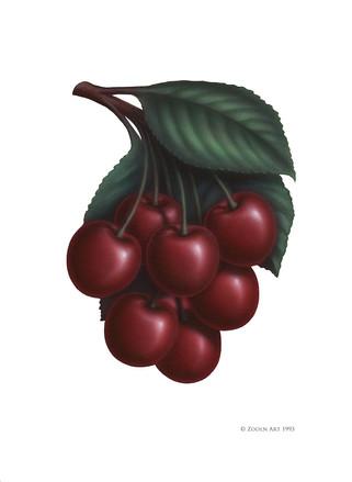Fruit-cherries.jpg