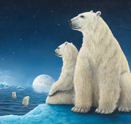 Ursa Major (Bear Collection)