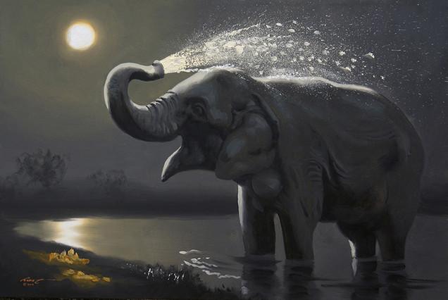 E-160-elephant.jpg