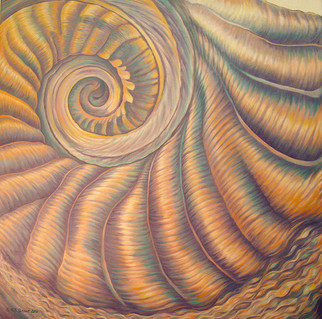 Peculiar Color - Seashell