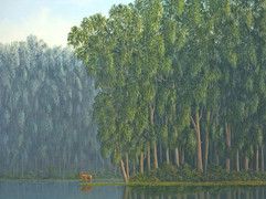 Lake (Other Animals - Deer)