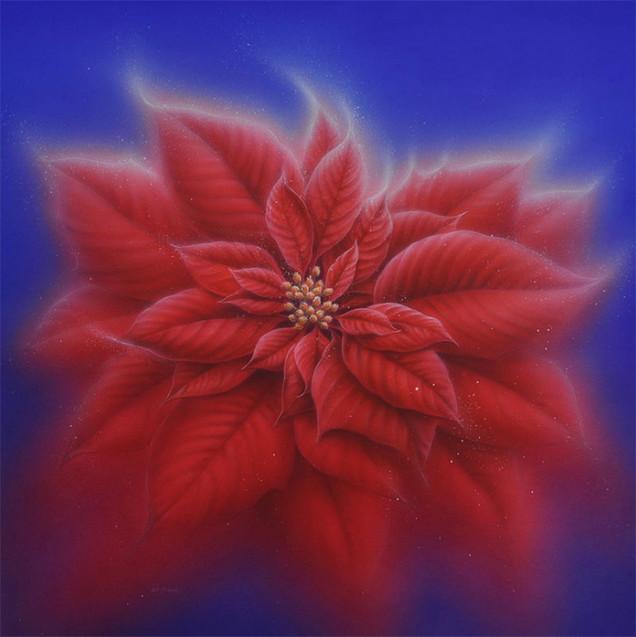 Poinsettia.jpg