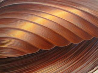 Autumn Unfurl - Seashell