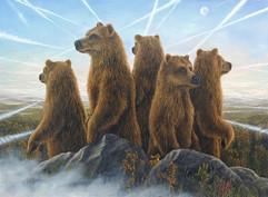 Aviators (Bear Collection)