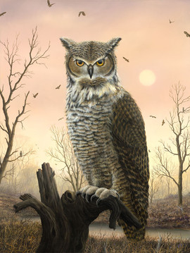 Bubo (Other Animals - Owl)