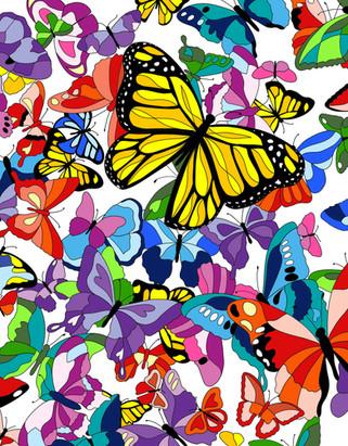 Butterfly FC Book.jpg