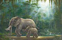 The Wellspring (Other Animals-Elephants)