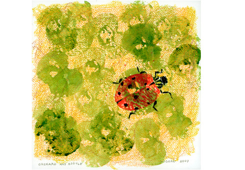 Orchard and Beetle