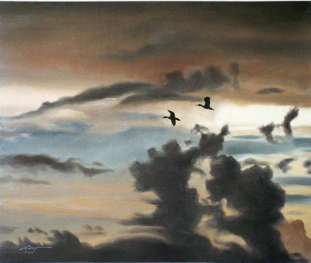 D-81-Whistling Ducks.jpg