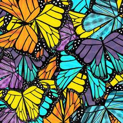 Bunch of Butterflies-2.jpg