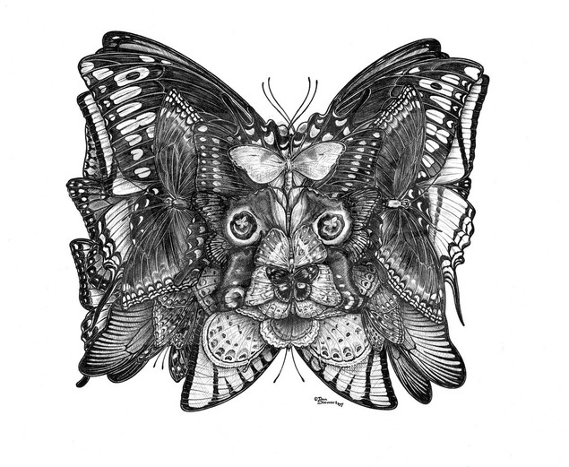 PapillonWM.jpg