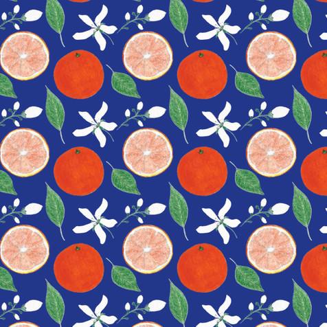 Orange-1d-blue.jpg