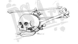 SkelecopterWM.jpg