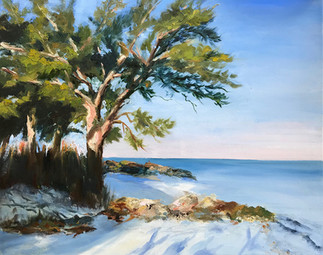 White Sand - Coastal