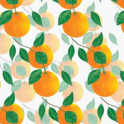 Orange-2g-1.jpg