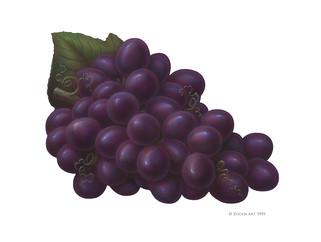 fruit-grapes.jpg