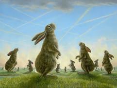 Quest (Rabbit Collection)