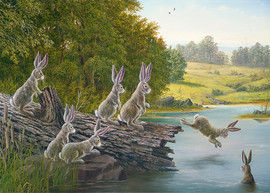 The Swimming Hole (Rabbit Collection)