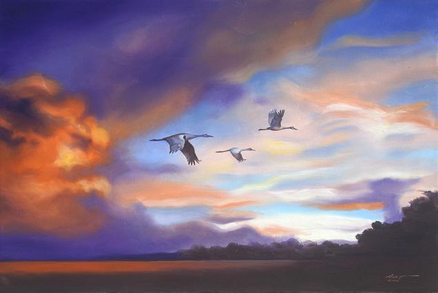 C-97-Cranes.jpg