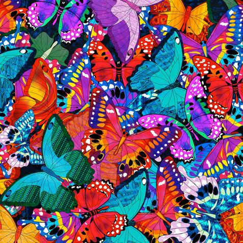 Butterflies BFC-6-btm
