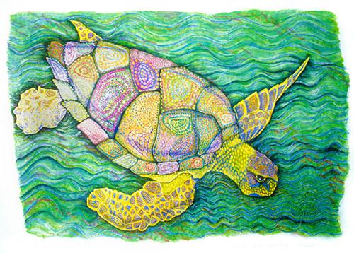 Cayman (Reptile Series - Turtle)