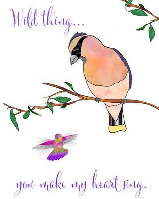 Cedar Waxwing with Hummingbird-2