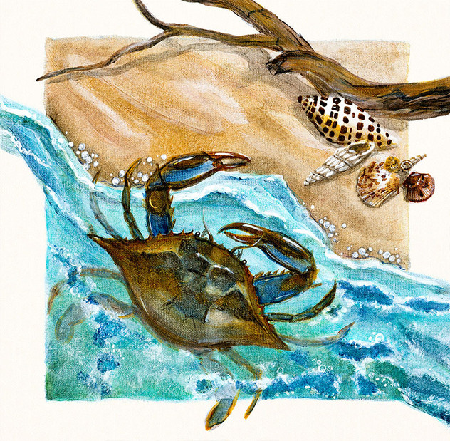 Crab with Seashells