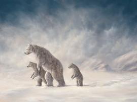 Mountain Way (Bear Collection)