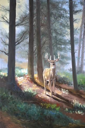 D-142-deer.jpg