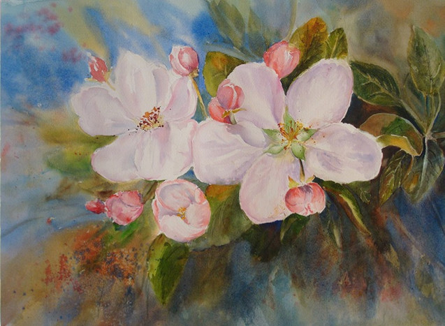Apple Blossom Flowers (K86)