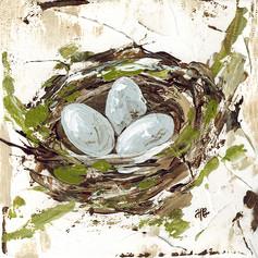 nest with eggs_6x6.jpg