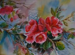 Blossoming Crabapple (K88)