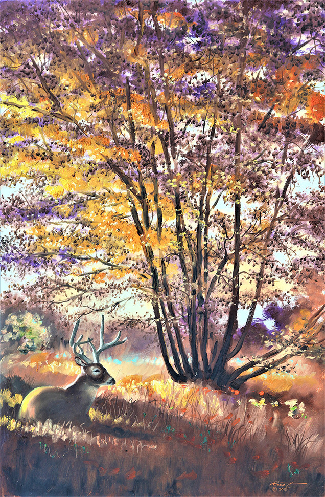 D-167 HR DEER AUTUMN 36X24 .jpg