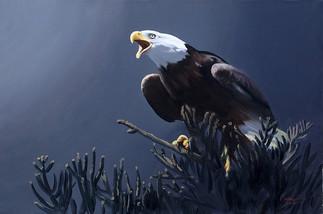 E-133-eagle.jpg