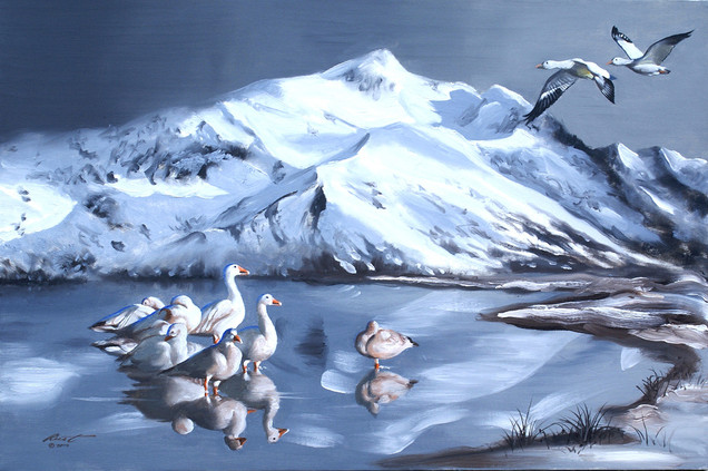G-40-geese.jpg