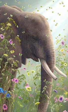 Presence (Other Animals- Elephant)