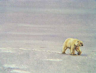 B-4-polarbear.jpg