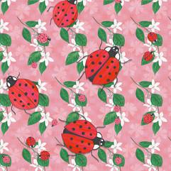 Ladybugs... chilling