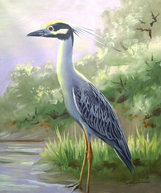 H-55-YCN Heron.jpg