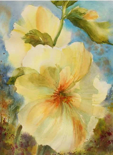 Yellow Hollyhock (K85)