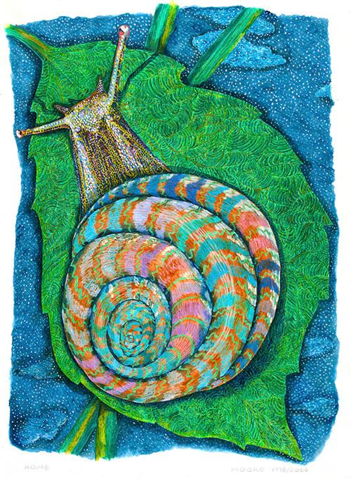 Home - (Snail)