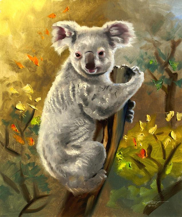 B-83-koala.jpg