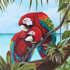 Copy of Amore 2 - Parrots in Tree_edited