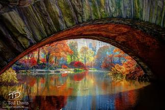 Hidden Fall Cdentral Park NYC.jpg