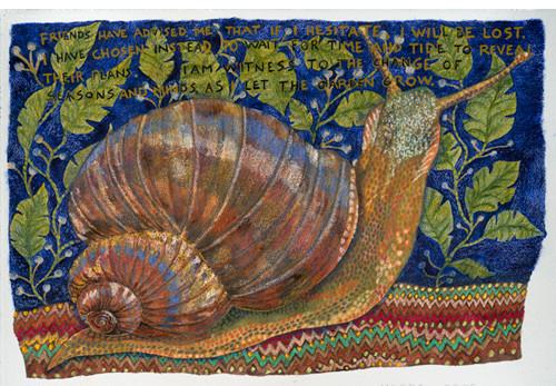 Patience - (Mollusk)