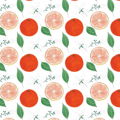 Orange-1d.jpg