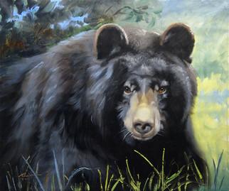 B-69-bk Bear.jpg