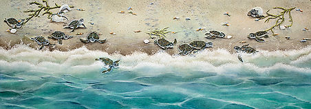 Great Escape - Baby Turtles