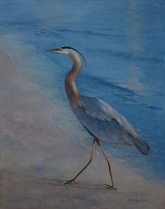 Little Blue Heron on the Beach.jpg