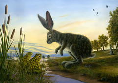 Resolve (Rabbit Collection)